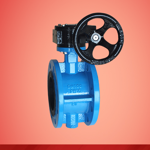 Flanged type turbine-driven butterfly valve (D341X)