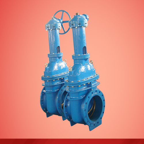 Rising stem gear box gate valve (Z541T)